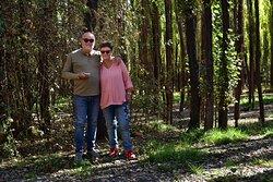 Bosque circundante