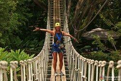 Hanging bridge over crocodiles - zip line tour