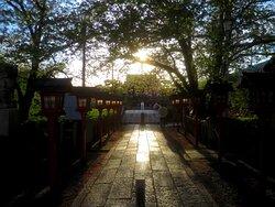 鳥居から太鼓橋の先に本殿を望む