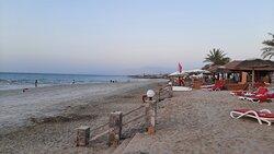 Cove Rotana