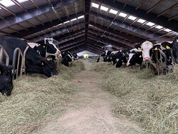 Visit our organic hay production farm as a group of professionals or enthusiasts for farming.