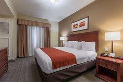 1 Bedroom Kitchenette Suite-King Bed
