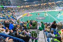 Saskatchewan Rush Lacrosse