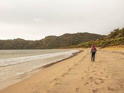 Maori Beach