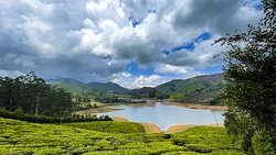 The lake surrounded by tea plantations feels like somewhere in Europe