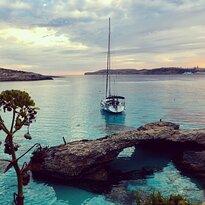 Feel The Seas