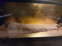 mummy  with Egypt tours for you