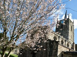 The Parish Church of St Mary the Virgin, Wirksworth: beautiful in spring