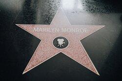 Room Hollywood
