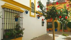 Estepona Town always full of surprises