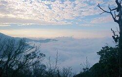 观雾国家森林游乐区
