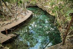 Cenote La Gloria