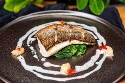 Senora Ayda - Grilled Sea Bass