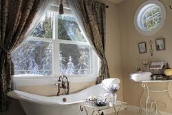 Enjoy the view while soaking in the bear claw tub
