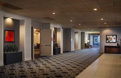 Host Meet & Greets or Standing Meetings in our Pre-function Area