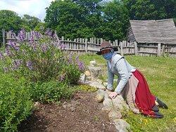Spring gardening - 17th-Century English Village