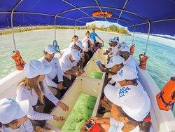Outrigger Mauritius Beach Resort Ozone