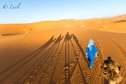 Morocco Tour 2022 - Travel and tours of Morocco