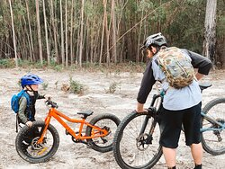 St Helens Mountain Bike Trails - Coaching and Transport Services Provided here