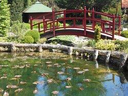 Red Japanese bridge Mozirski gaj