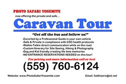 SAFE-PRIVATE-FRIENDLY-FUN!  NO ENTRY RESERVATIONS NEEDED BY BOOKING THE CARAVAN TOUR. 3 Day pass for re-entry on you own.