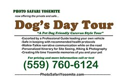 DOGS WELCOME!  NO ENTRY RESERVATIONS NEEDED BY BOOKING THE CARAVAN TOUR. 3 Day pass for re-entry on you own.
