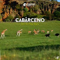 Parque de la Naturaleza de Cabarceno