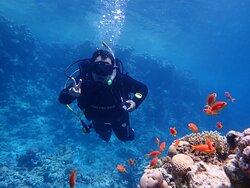 Diving with ronjenjehurgada