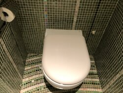 No bidet, and water keeps on flushing (have to double check so as as not to waste water)