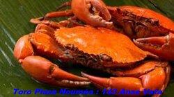 Crabe de Palétuvier Farci a l'Antillaise