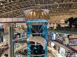 Самый высокий цилиндрический аквариум в мире