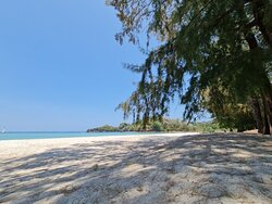 บริเวณชายหาดร่มรื่นมีต้นไม้ใหญ่ หาดทรายขาวสะอาดครับ