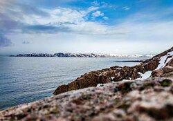 На берегу Северного Ледовитого океана