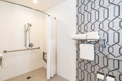 King Accessible Roll In Shower Holiday Inn Express Walk of Fame