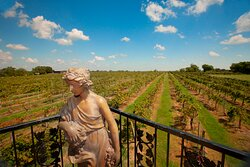 Schedule an outing for wine tasting at Messina Hof Winery