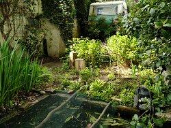 Tuin vanuit het pand gezien