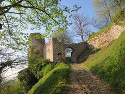 accès direct forêt et  monument : château de Ferrette