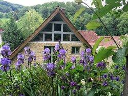 façade arrière de la maison : accès château et forêt direct