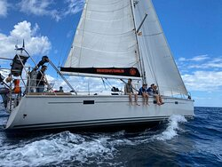 Enjoy a beautiful sailing trip in the Strait of Gibraltar, lean back and relax before the Spanish Tapas Dinner at Sea
