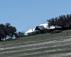 View of Pedernales Cellars on the hill.