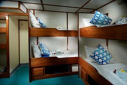 Cabin 8 - lower deck with shared bathroom on dive deck 4 single bunk beds