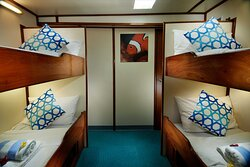 Cabin 7 - lower deck with shared bathroom on dive deck 4 single bunk beds