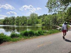 belle vue sur le Lac Henri