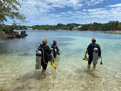 Best diving place on Roatan