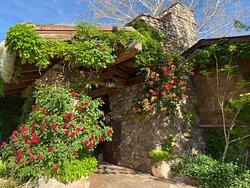 Welcome to El Portal Sedona Hotel