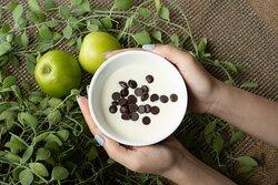 Breakfast - Yogurt with Chocolate Chips
