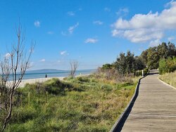 Well developed board walks near the sea on the Bay Trail at Rosebud