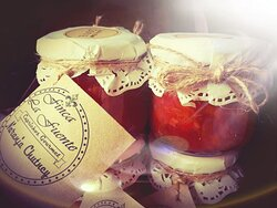 Gourmet jams, Chutneys and sauces forr goatcheese