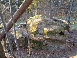 """Tak z góry wyglądają pozostałości dachu zameczku """"Friedenstein """"."""