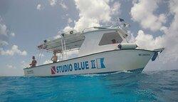 Studio Blue Cozumel Divers